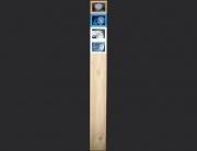 trigo celeste. ensamblaje madera, yeso y pintura. 2004. 155x17x12cm